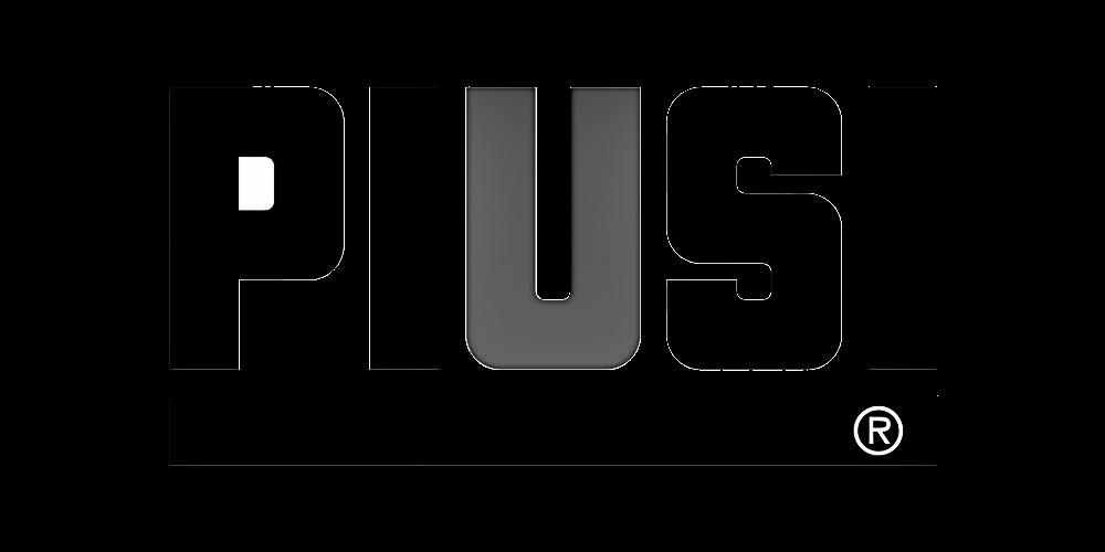 Logo Piusi S.p.A. Macchinari Idraulici